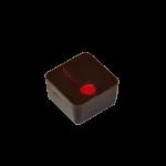 GRIOTTINE : Ganache aux griottes ciselées enrobée de chocolat noir